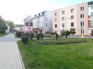 Keře v centru Litvínova